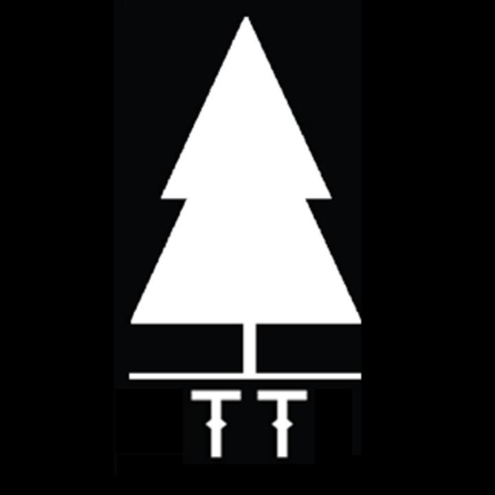 Tall Trees @ Zaphod Beeblebrox - Ottawa, Canada
