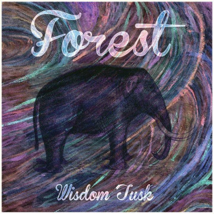 Forest @ Westgarth Social Club - Middlesbrough, United Kingdom