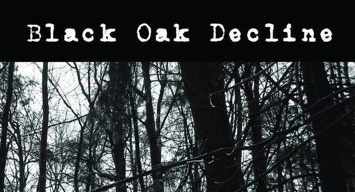 Black Oak Decline Tour Dates