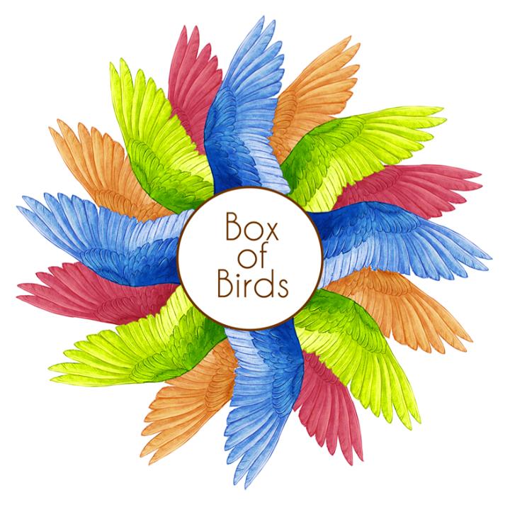 Box of Birds @ TT the Bear's - Cambridge, MA