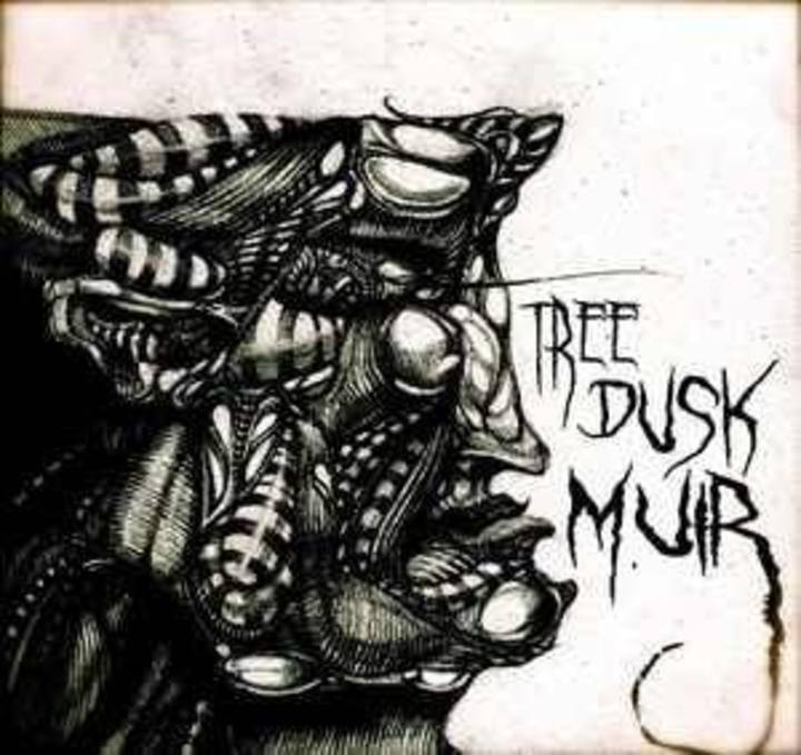 Tree Dusk Muir Tour Dates