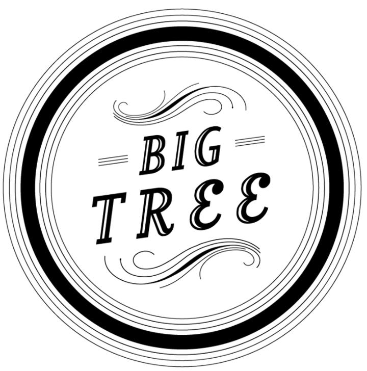 Big Tree @ Tammany Hall - New York, NY