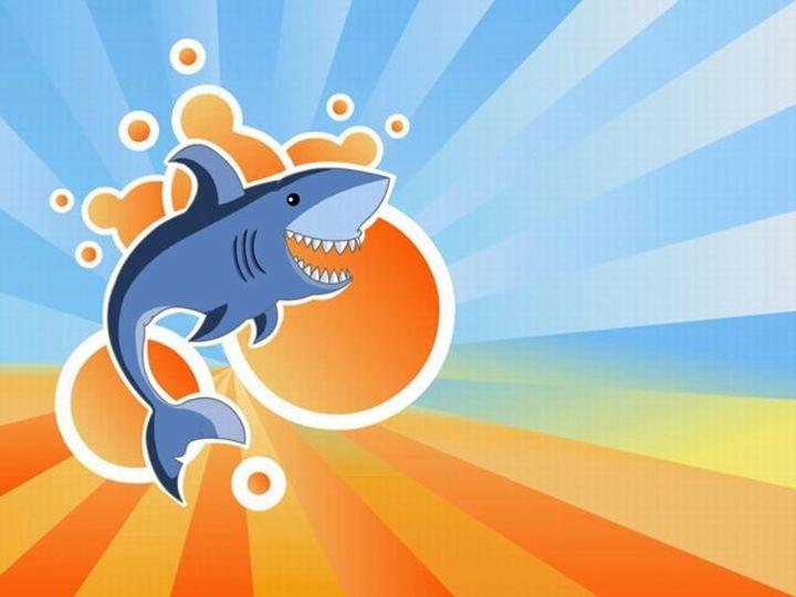 The Blue Sharks Tour Dates