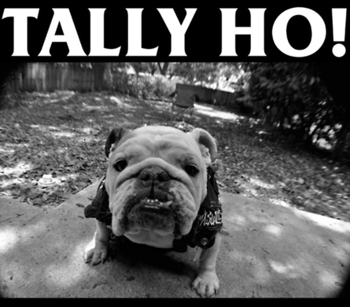 Tally Ho! @ Downtown Orlando Rec Center - Orlando, FL
