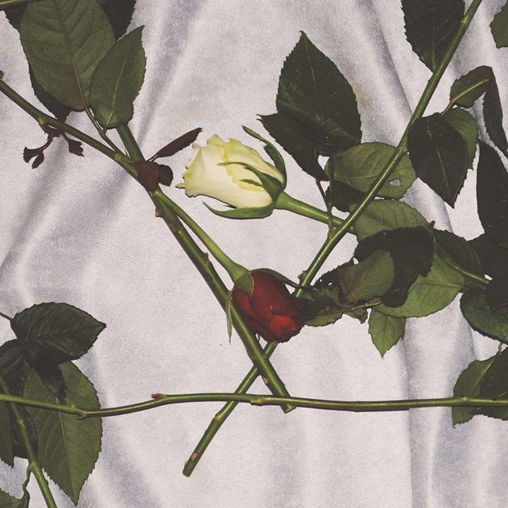 Chain Of Flowers @ Clwb Ifor Bach - Cardiff, United Kingdom