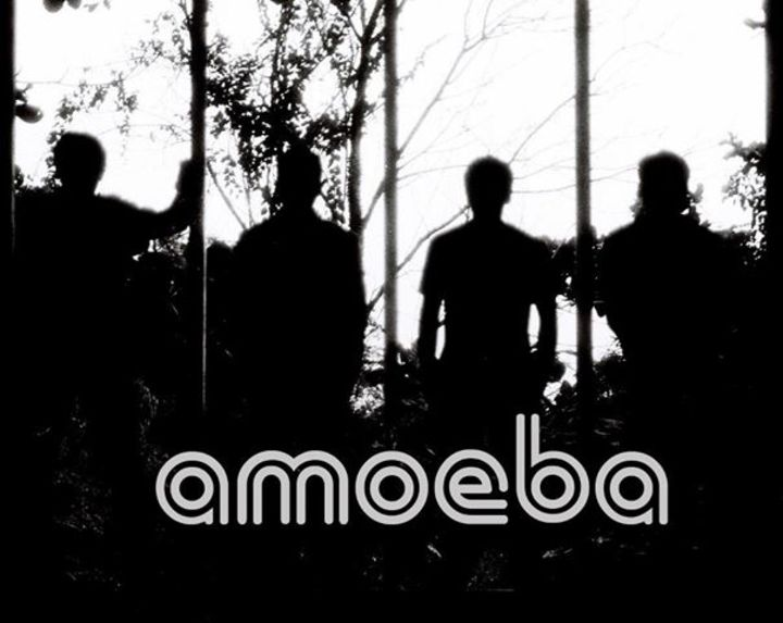 Amoeba Band Tour Dates
