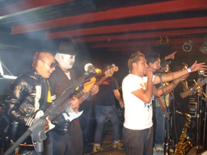 Maskatesta Tour Dates