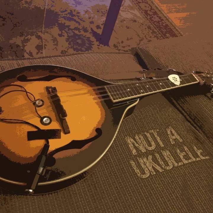 Bryan Ranney: 2015 'Not A Ukulele' Tour Tour Dates