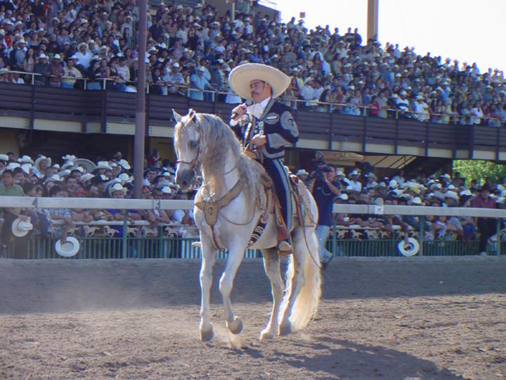 Ezequiel Peña Tour Dates