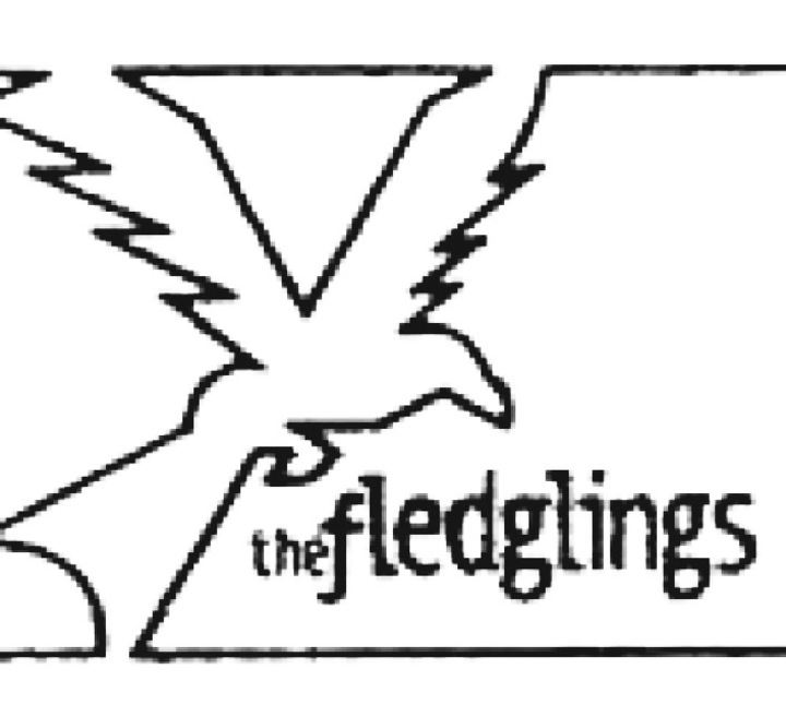 The Fledglings Tour Dates