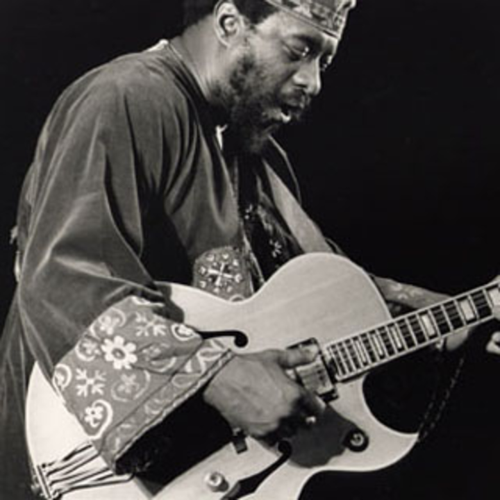 James Blood Ulmer @ Porgy & Bess - Bezirk-Innere Stadt, Austria