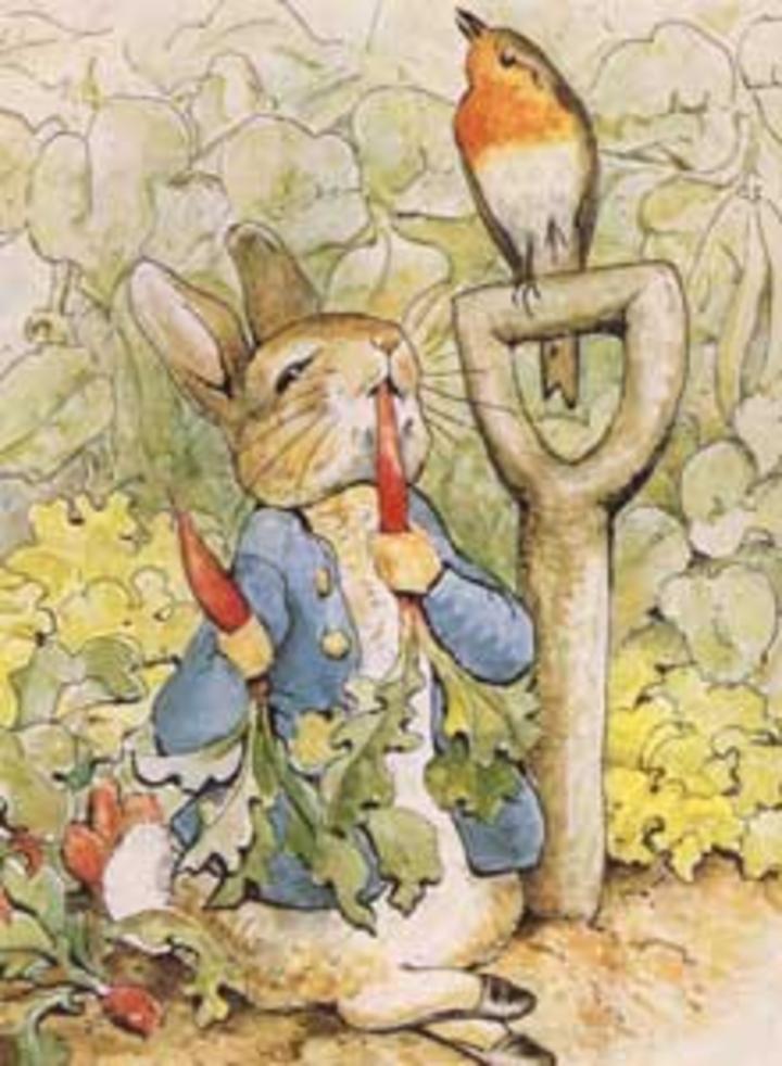 Peter Rabbit Tour Dates