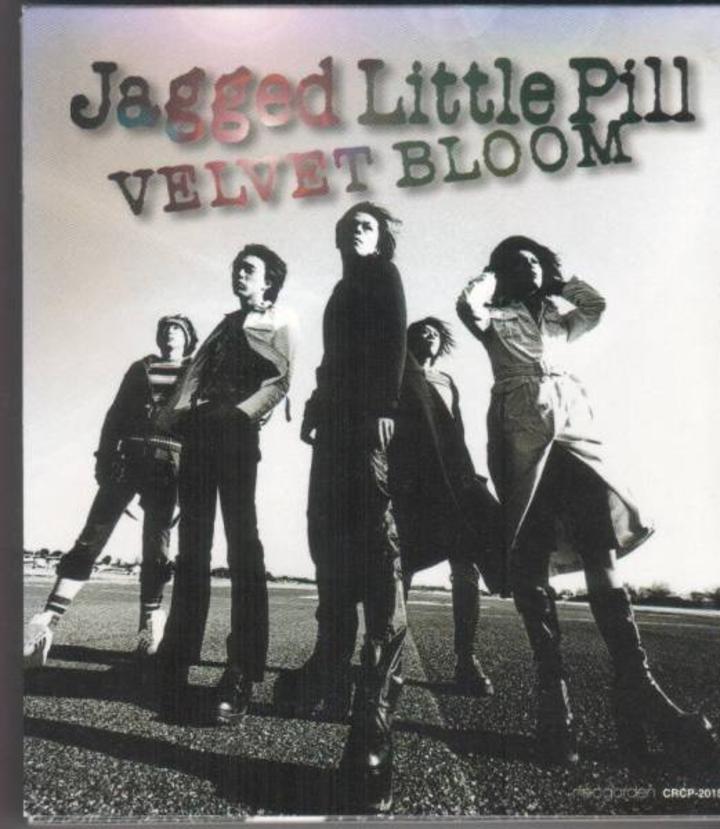 Jagged Little Pill Tour Dates