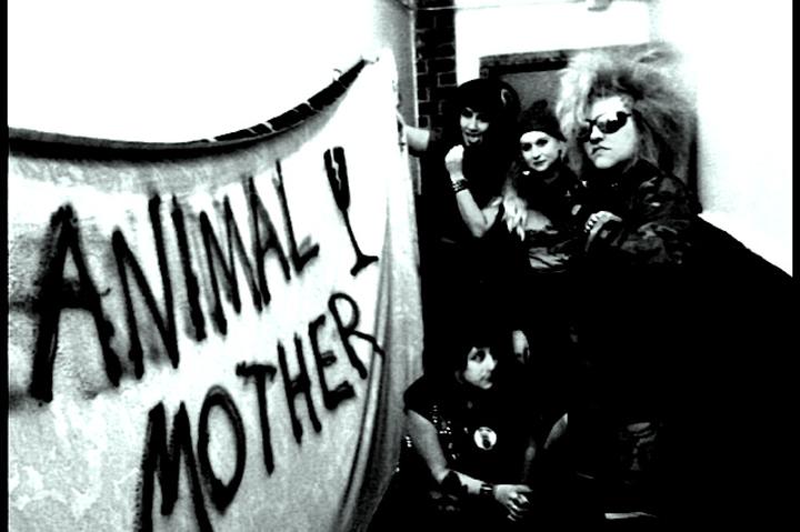 Animal Mother Tour Dates
