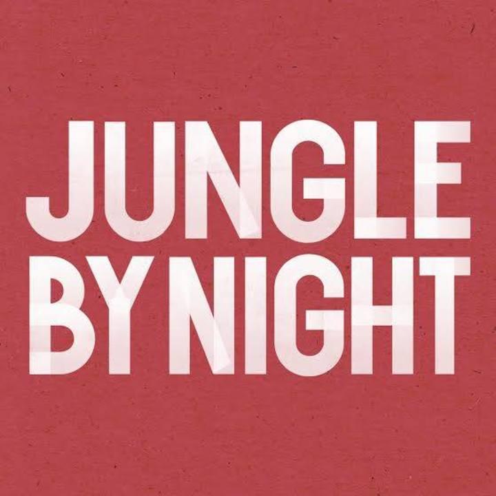 Jungle By Night @ De Roma - Antwerp, Belgium