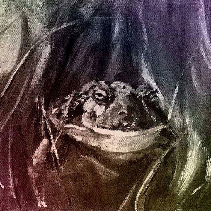 Bullfrog Tour Dates