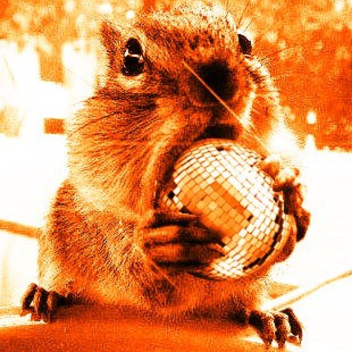 DJ Squirrel Tour Dates