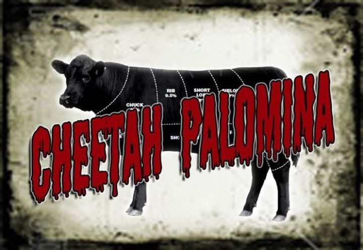 Cheetah Palomina Band Tour Dates