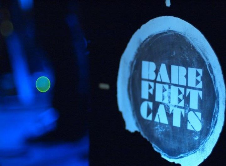 BareFeetCats Tour Dates