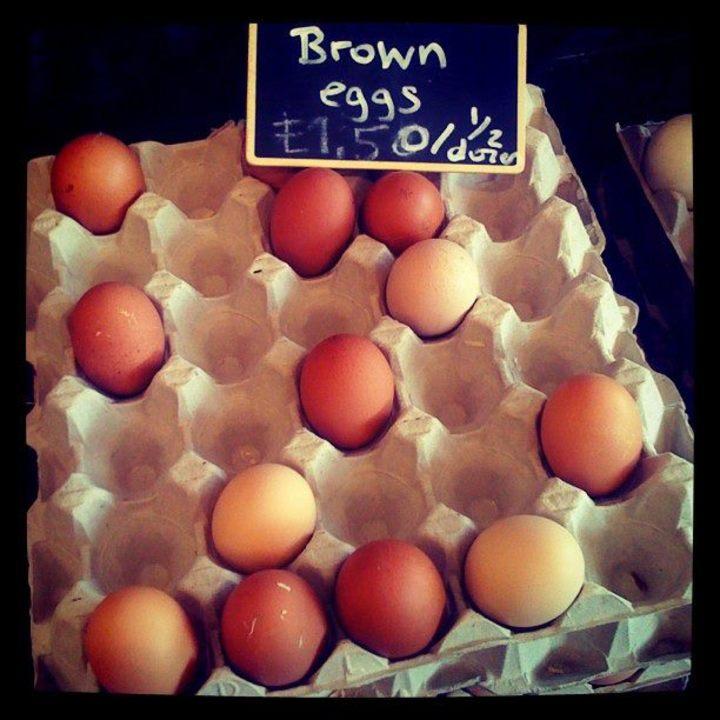 Eggs & Tea Tour Dates