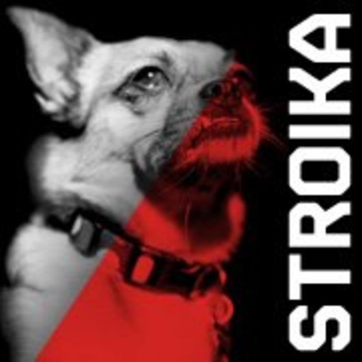 STROIKA Tour Dates