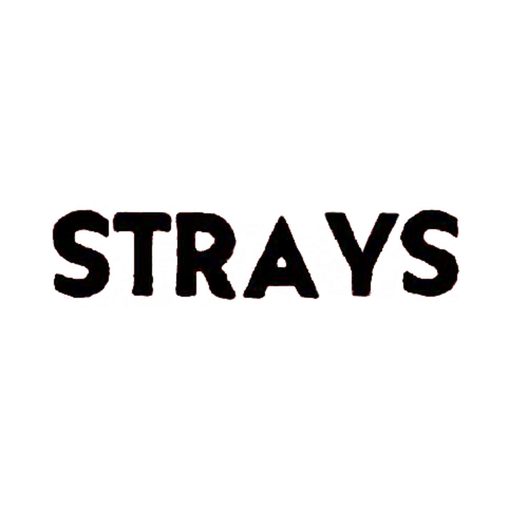 strays Tour Dates