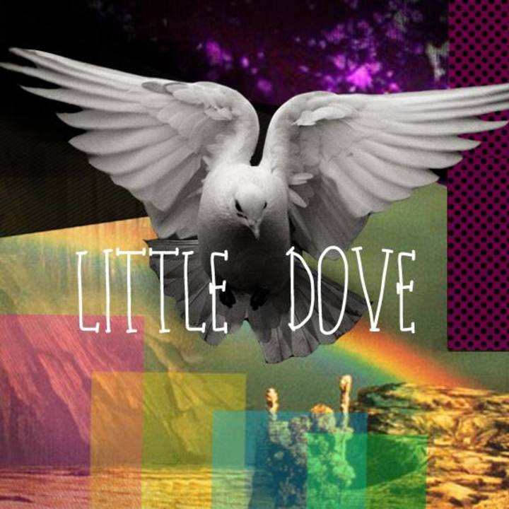 Little Dove Tour Dates
