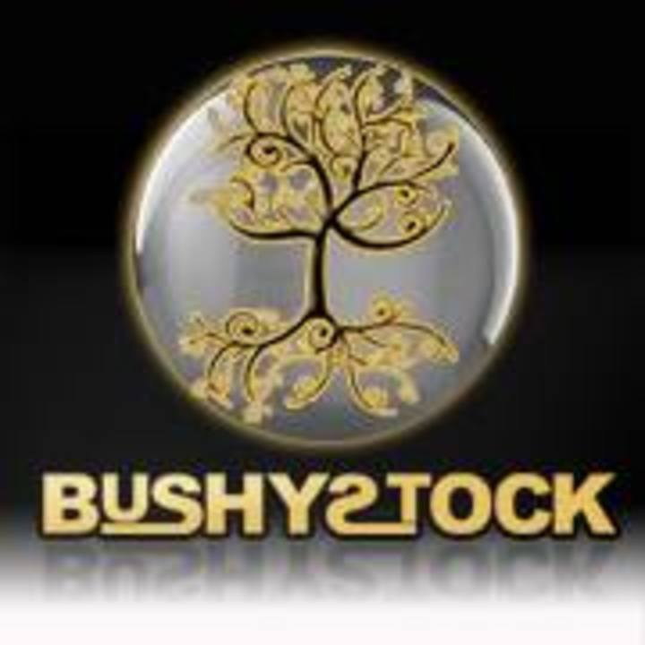 BushyStock Tour Dates