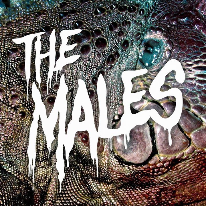 The Males Tour Dates