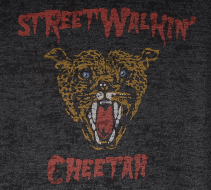 The Street Walking Cheetahs Tour Dates