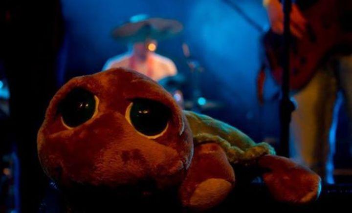 TurtleGun Tour Dates
