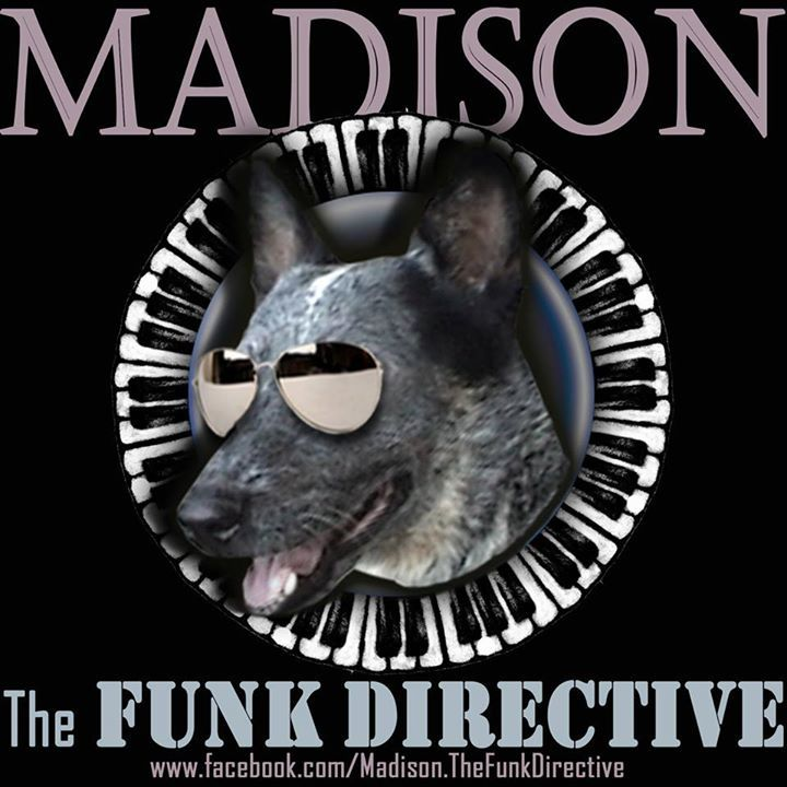 Madison & The Funk Directive Tour Dates