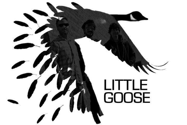 Little Goose Tour Dates
