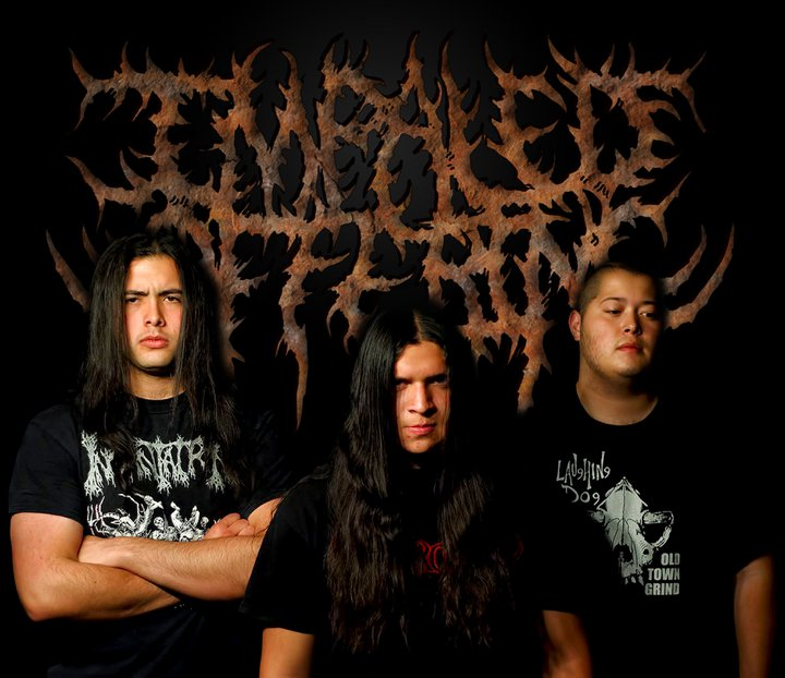 Impaled offering Tour Dates