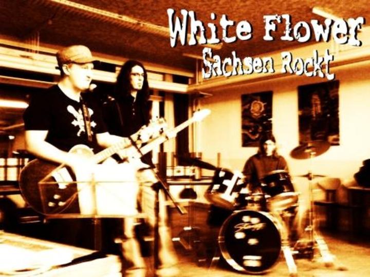 White flower Tour Dates