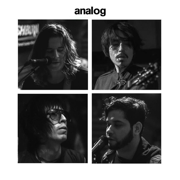 Analog Tour Dates