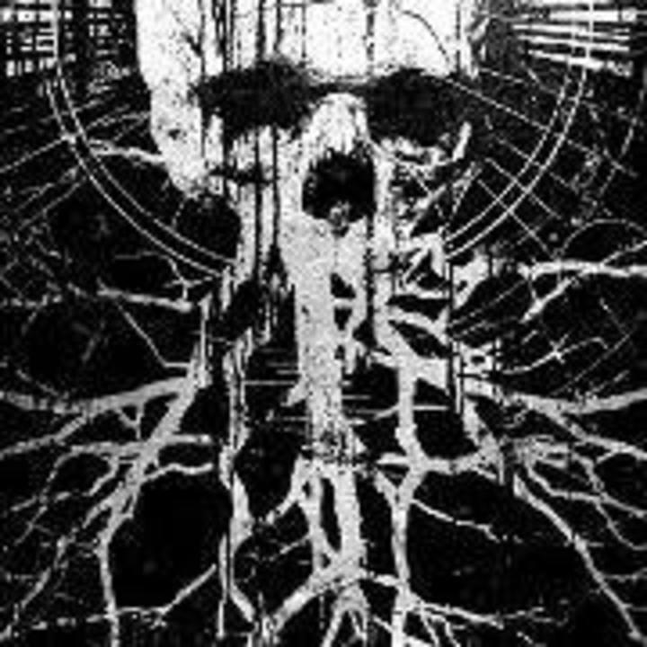 Plague Widow Tour Dates