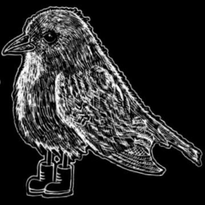 Birds Of Passage Tour Dates