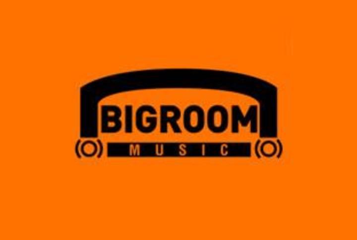 Big Room Music & Edm Tour Dates