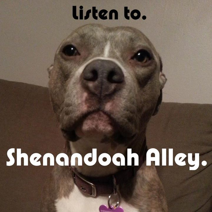 Shenandoah Alley Tour Dates