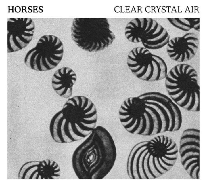Horses Tour Dates