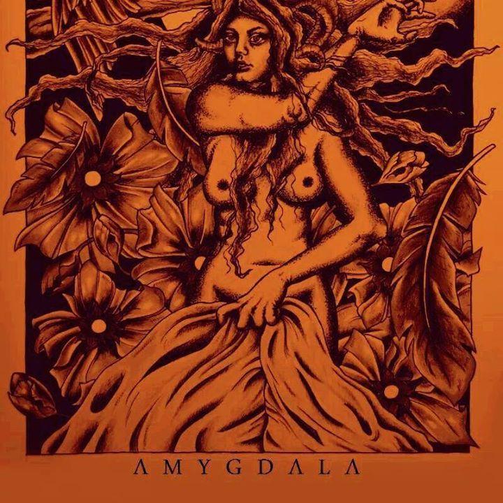 Amygdala Tour Dates