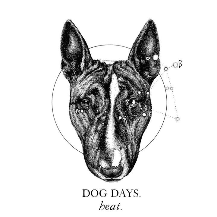 Dog Days Tour Dates