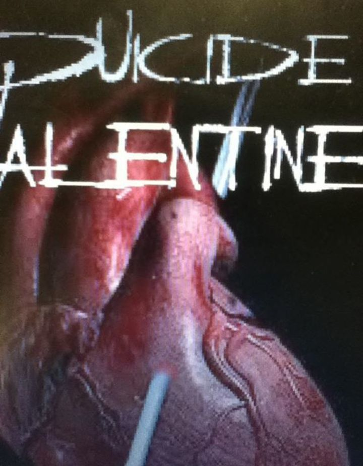 Suicide Valentine Tour Dates