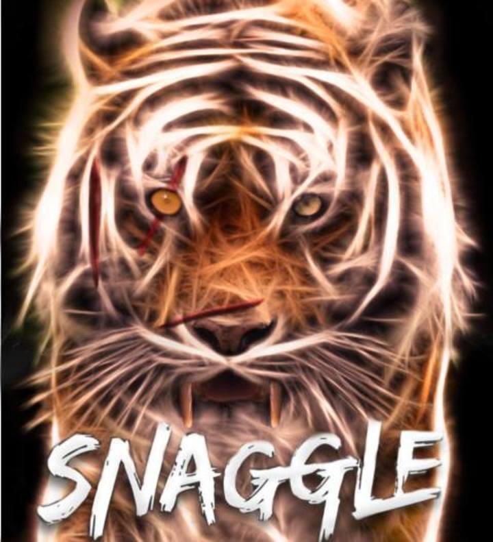 Snaggle Tour Dates
