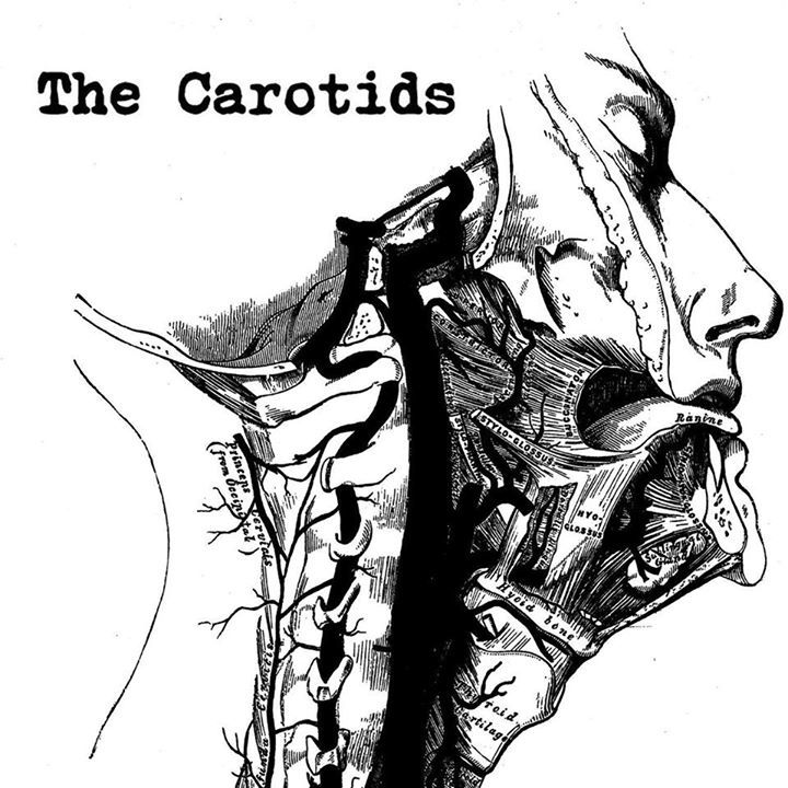 The Carotids Tour Dates