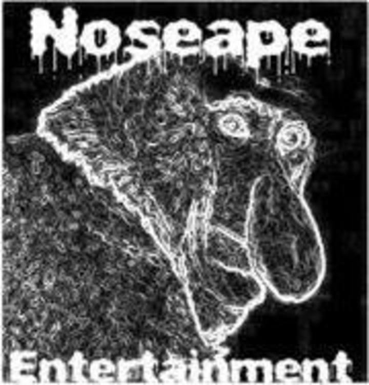 Noseape Entertainment Tour Dates