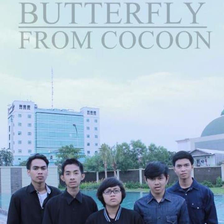 butterfly from cocoon Tour Dates