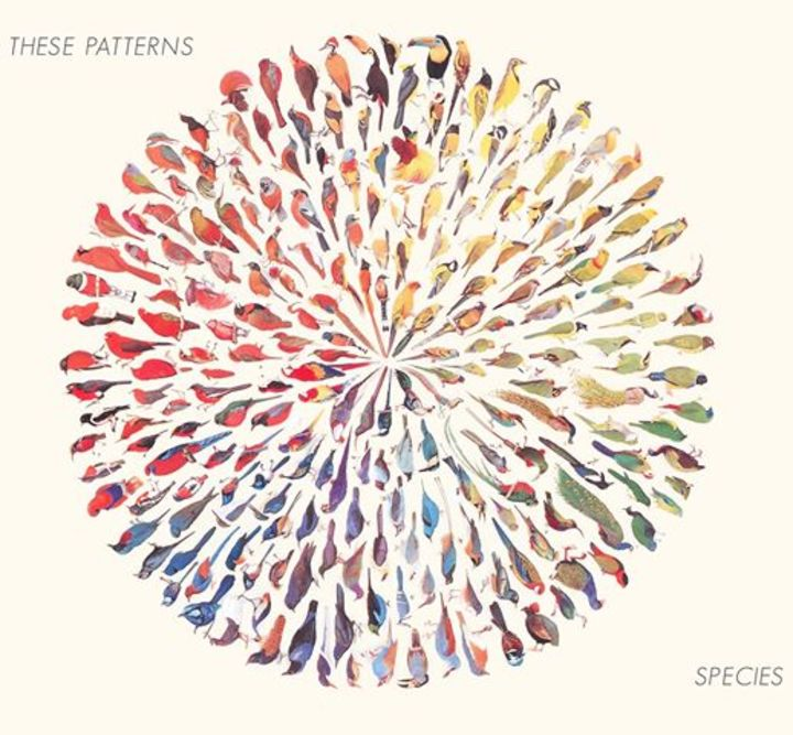 THESE PATTERNS Tour Dates