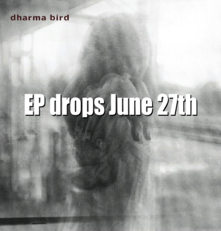 Dharma Bird Tour Dates